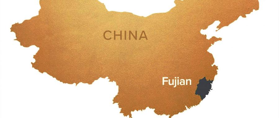 oolong tee aus china der provinz fujian