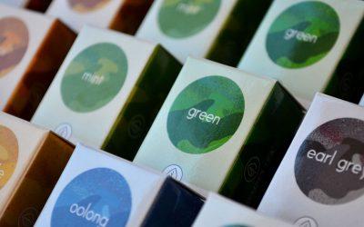 El té verde es la bebida de moda – Su origen, características y preparación