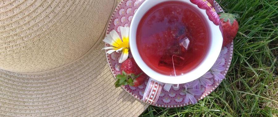 por qué beber te ecologico semper tea