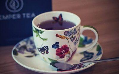 Bed and Bike y Té Orgánico – Una taza de té en apartamentos de lujo