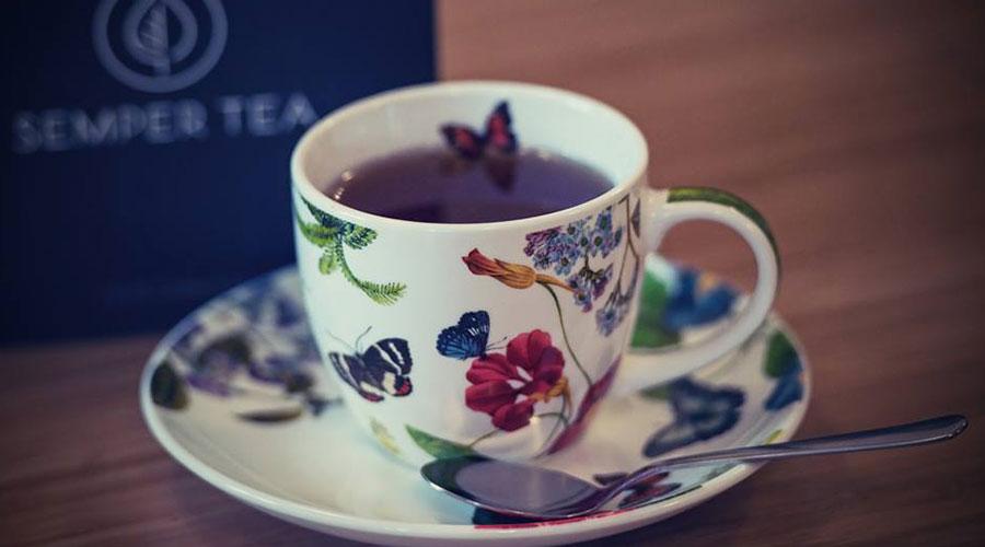 bed and breakfast y te organico una taza de te en apartamentos de lujo semper tea