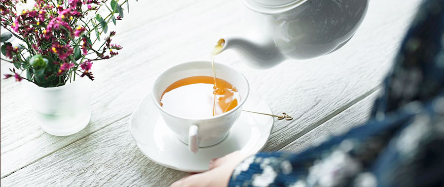 bio tee der umwelt zuliebe semper tea