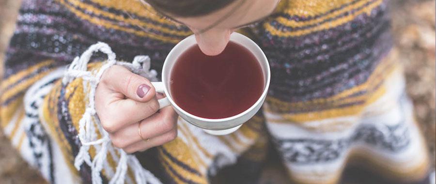 warum ist bio tee besser semper tea