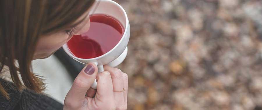 La alimentación consciente infusiones y tes ecologicos empresa de te para horeca silvia bordon semper tea