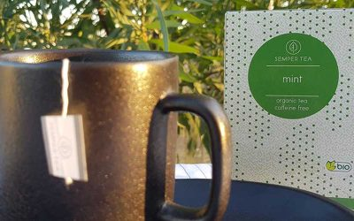 Tés Infusiones para cafetería – Como destacarse de la multitud