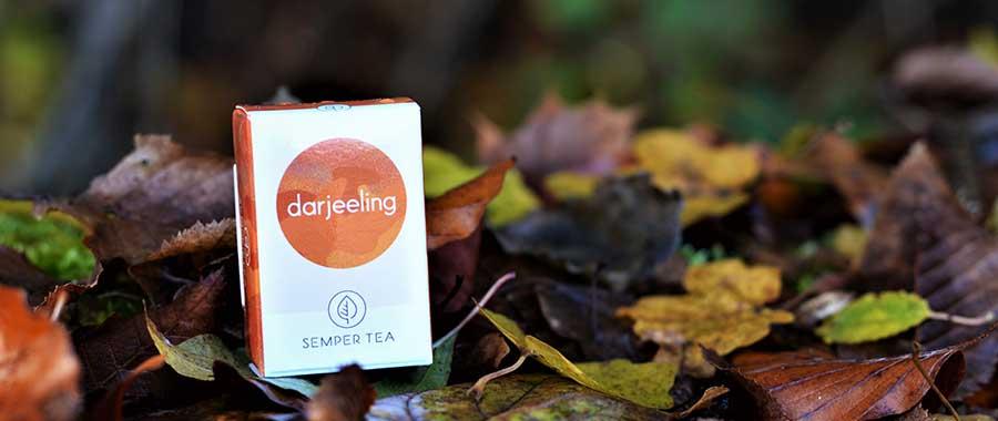 mit tee kochen semper tea