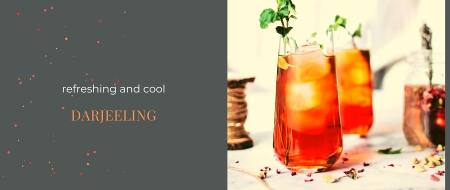 How to make Iced tea | Recipe Iced tea with Watermelon and Darjeeling