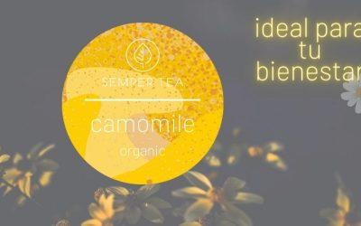 Té de manzanilla | Beneficios y propiedades para tu salud y bienestar