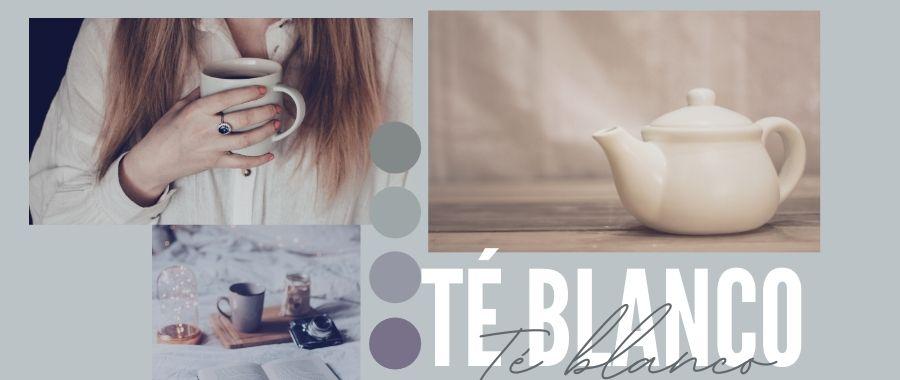 Todo sobre el té blanco: propiedades y beneficios